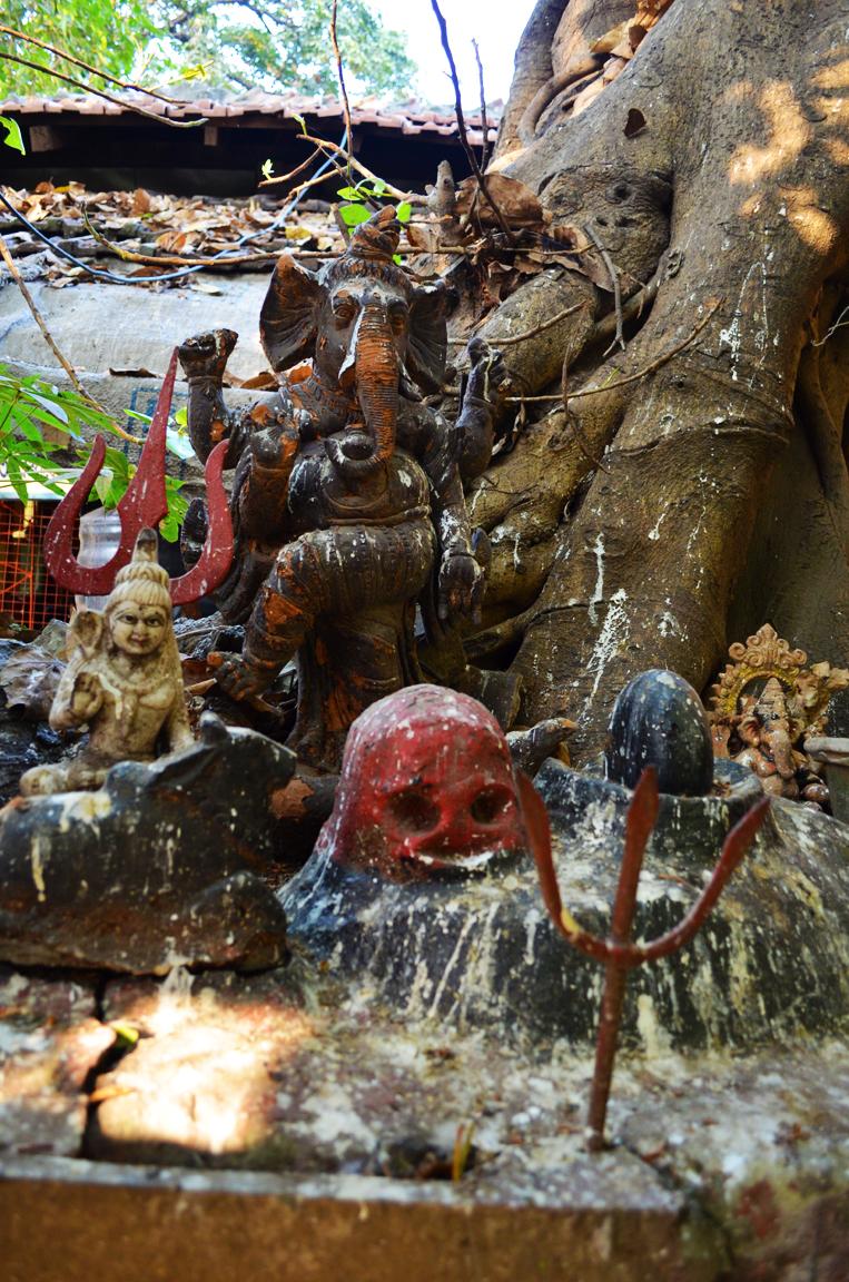 Shahnagar Tree Shrine