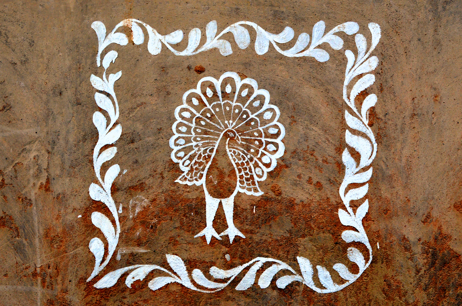 Decorative peacock, painted on a Santali tribal village home in Santiniketan, West Bengal.